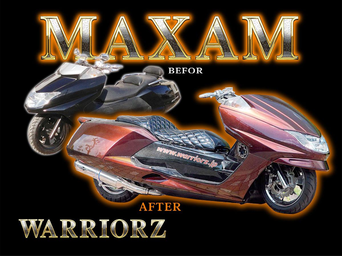 YAMAHA MAXAM morphous aero parts